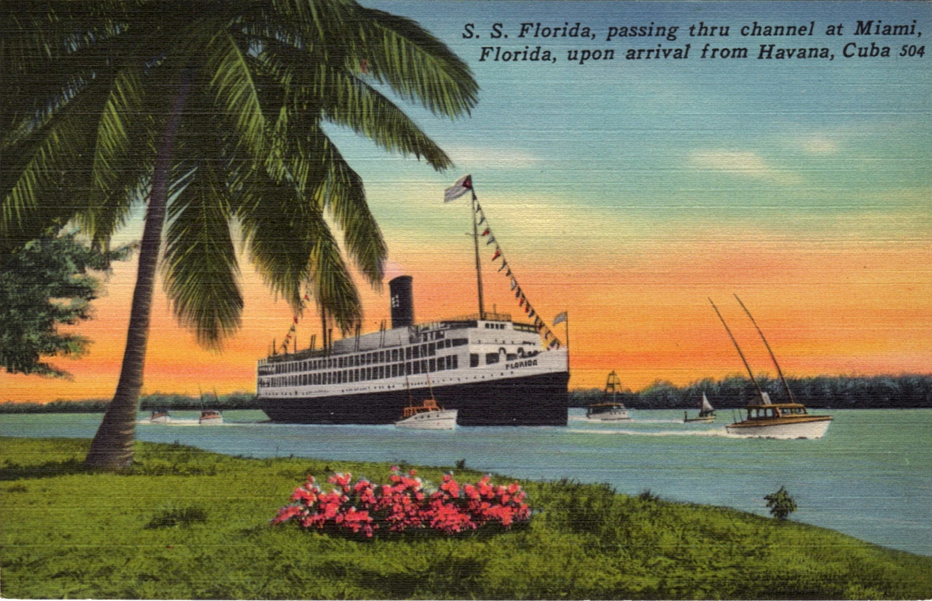 Vintage Postcard of Cruise from Miami to Havana