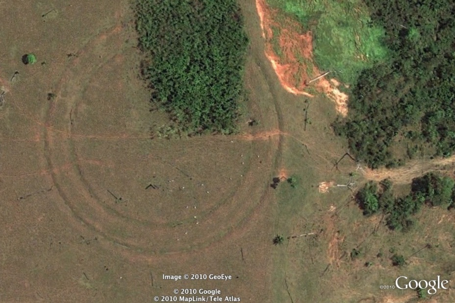 Amazon: Archaeological wonder or alien crop circles?