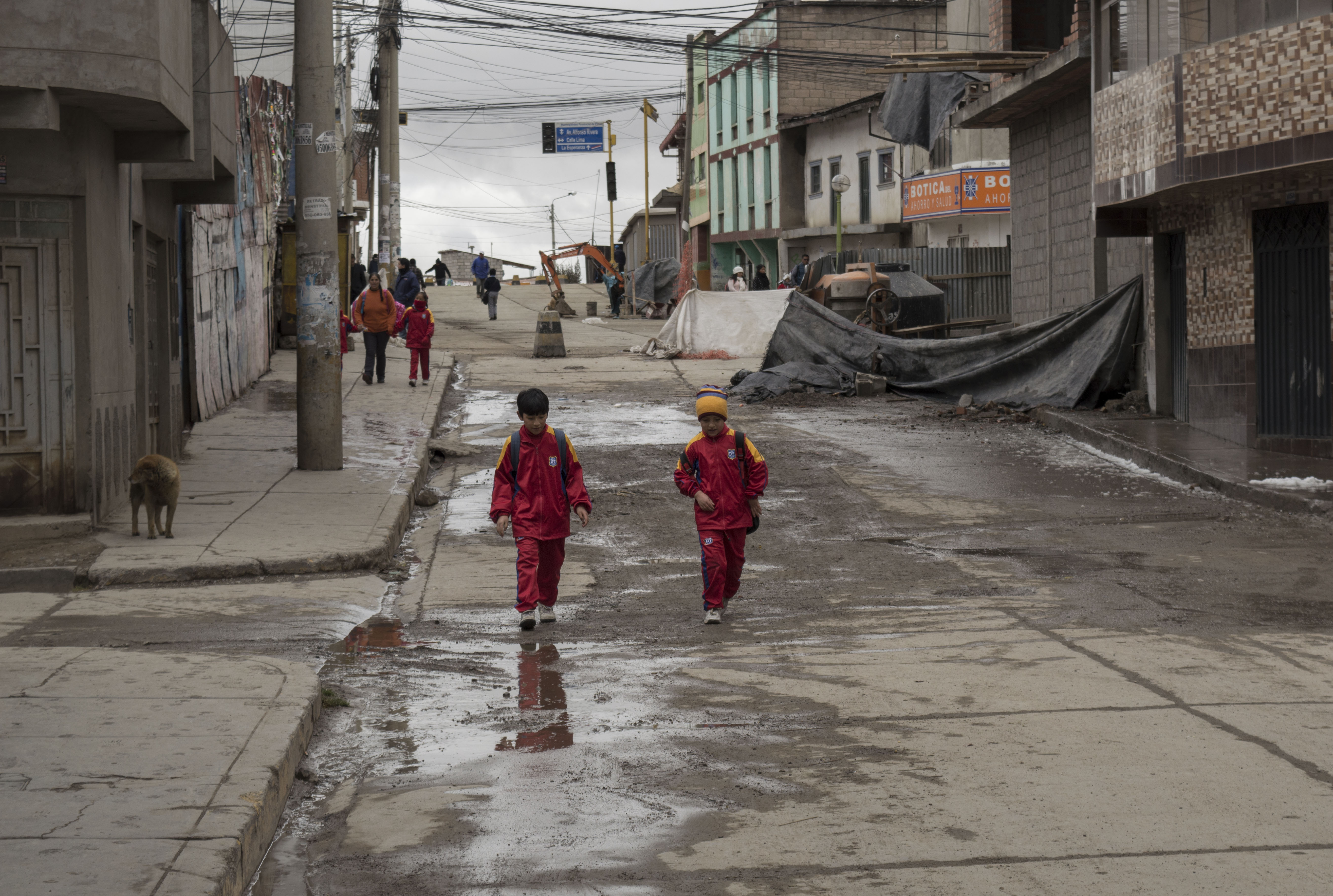 Local authorities say heavy-metal pollution has caused mental retardation, genetic malformations and brain damage, which ultimately leads to death if untreated, according to Peru's environmental regulator.