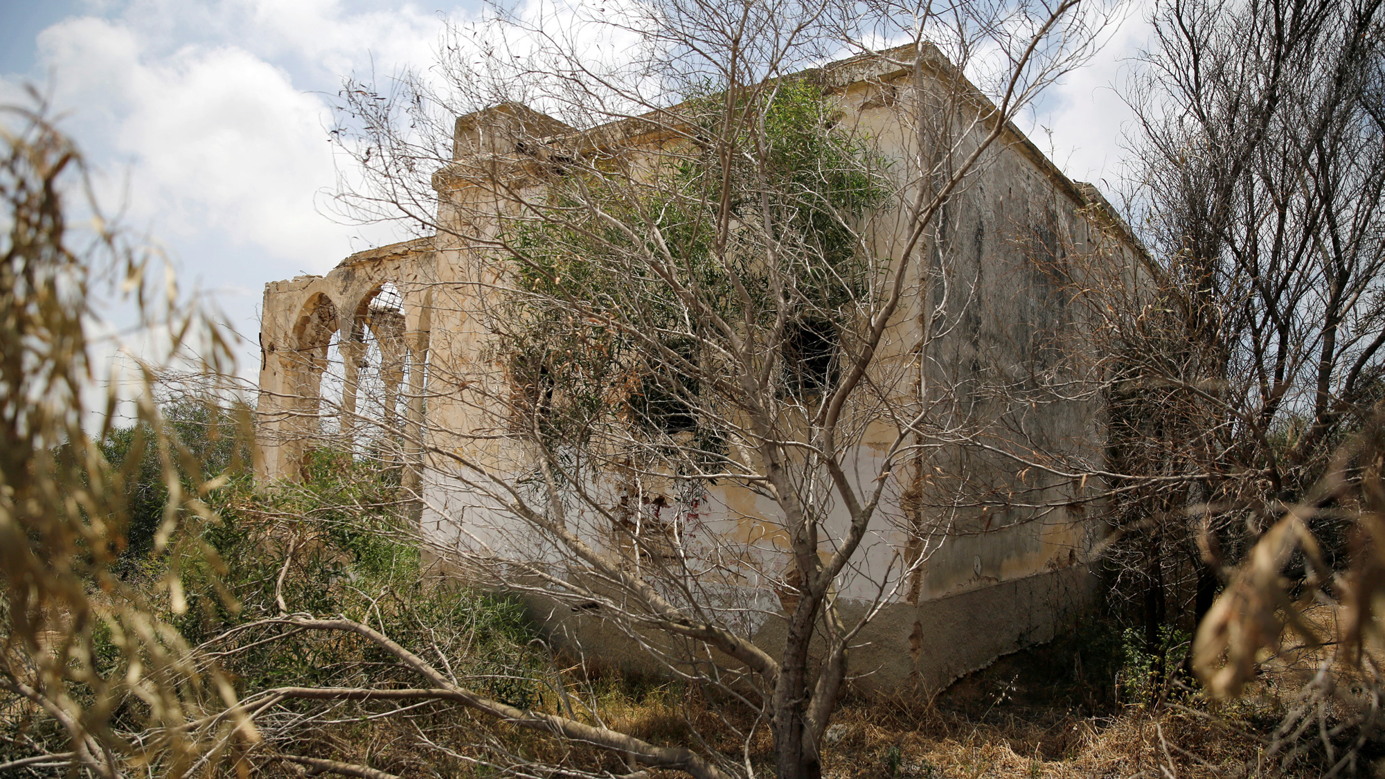 A stone building is crumbling and surrounded by tree branches