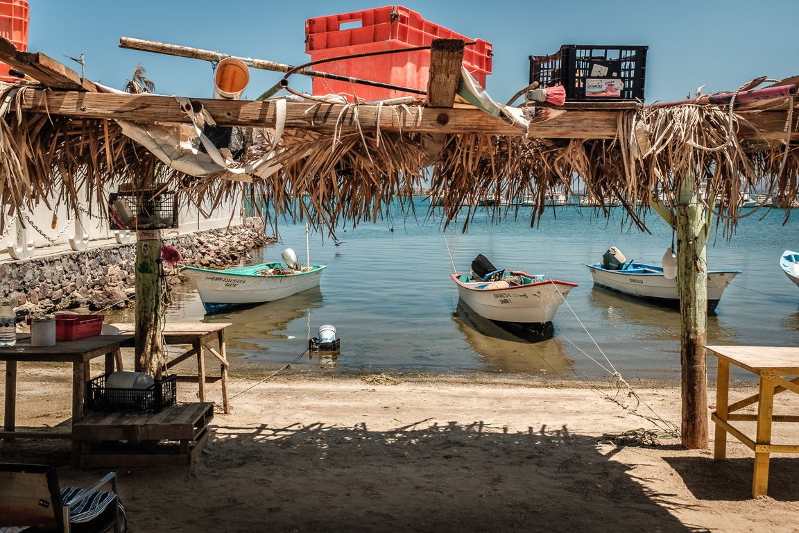 fishing boats in a harbor in mexico