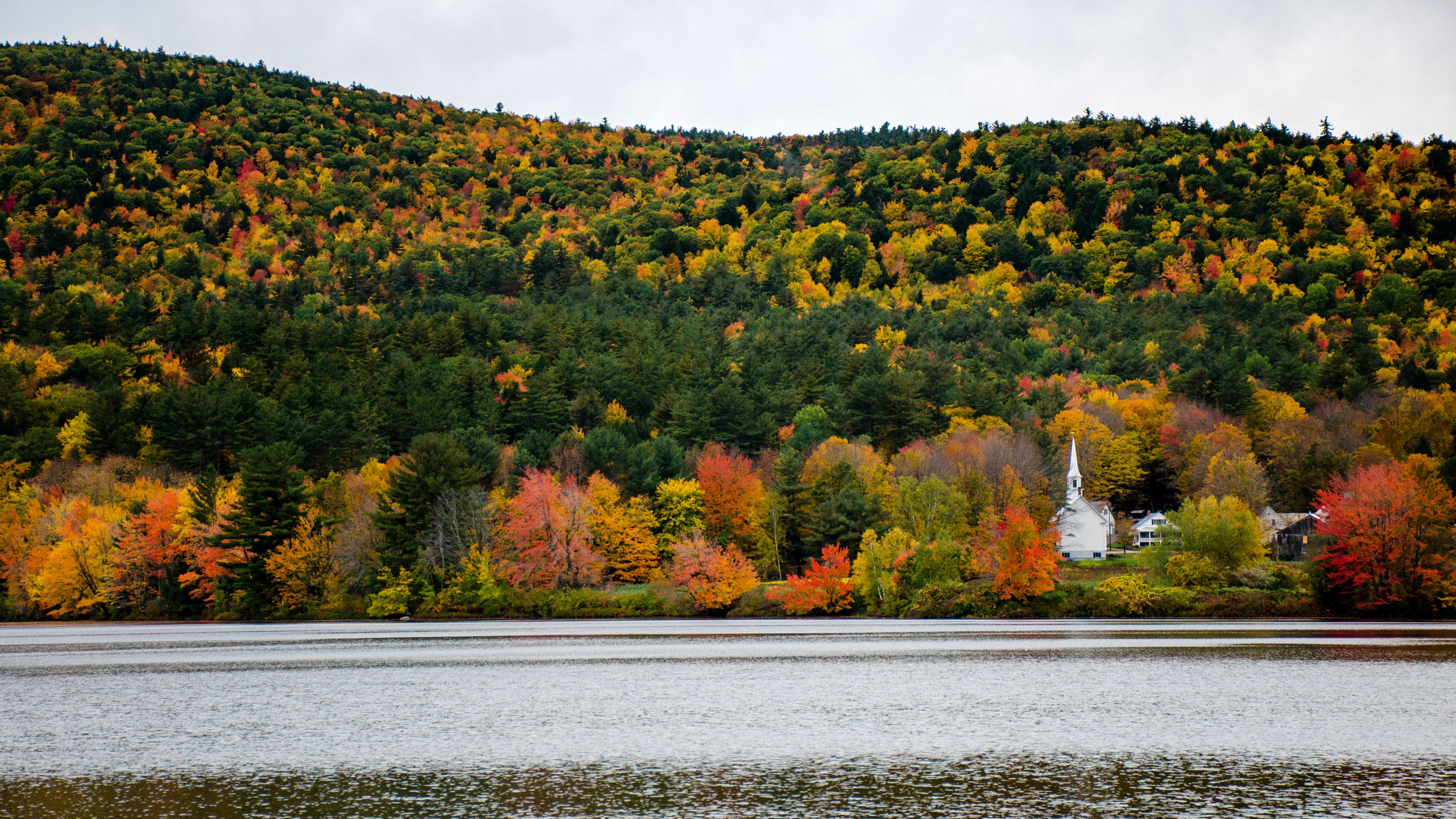 Fall leaves cover a hill above a river.