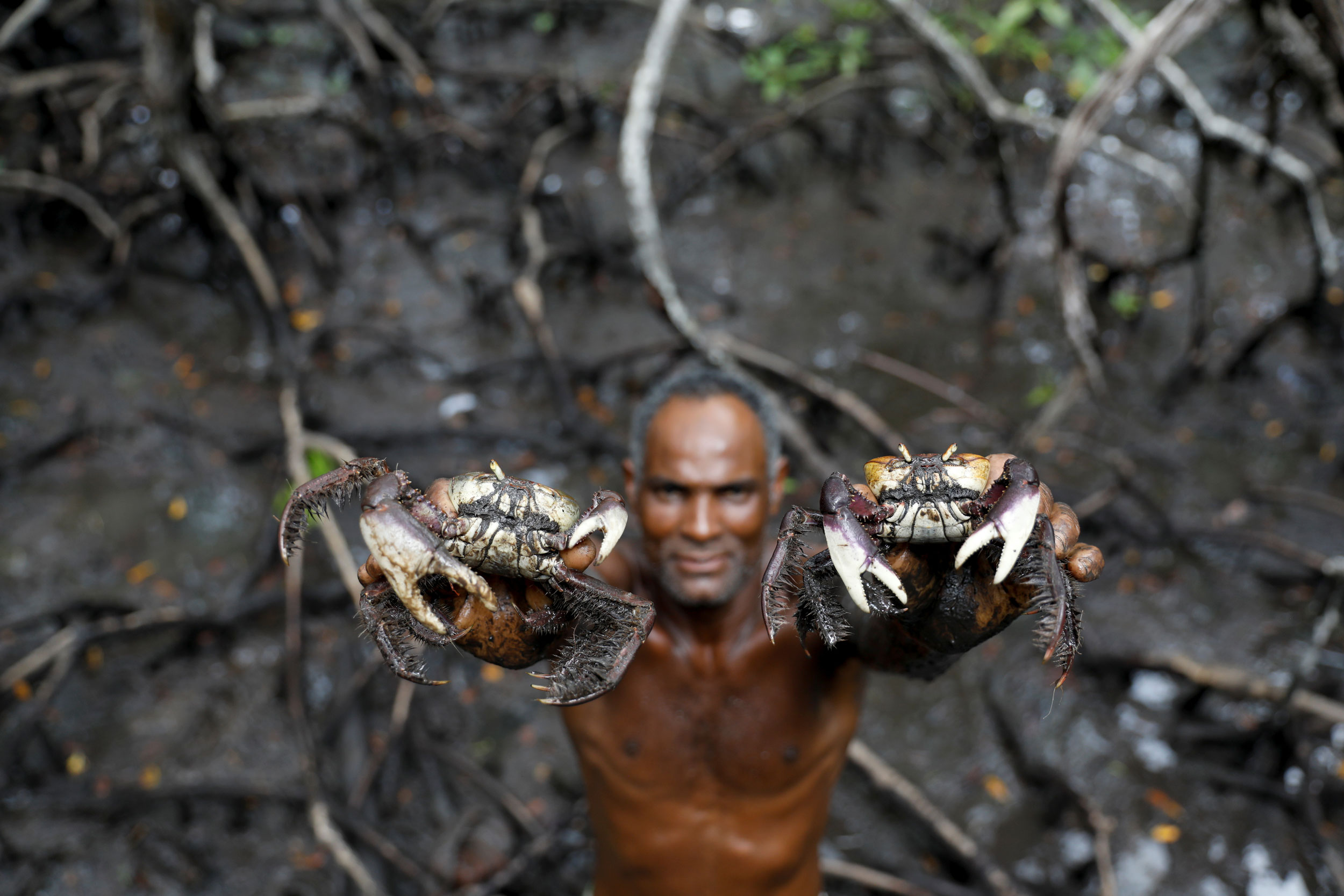 A man is shown without a shirt on holding a crab in each hand above his head.