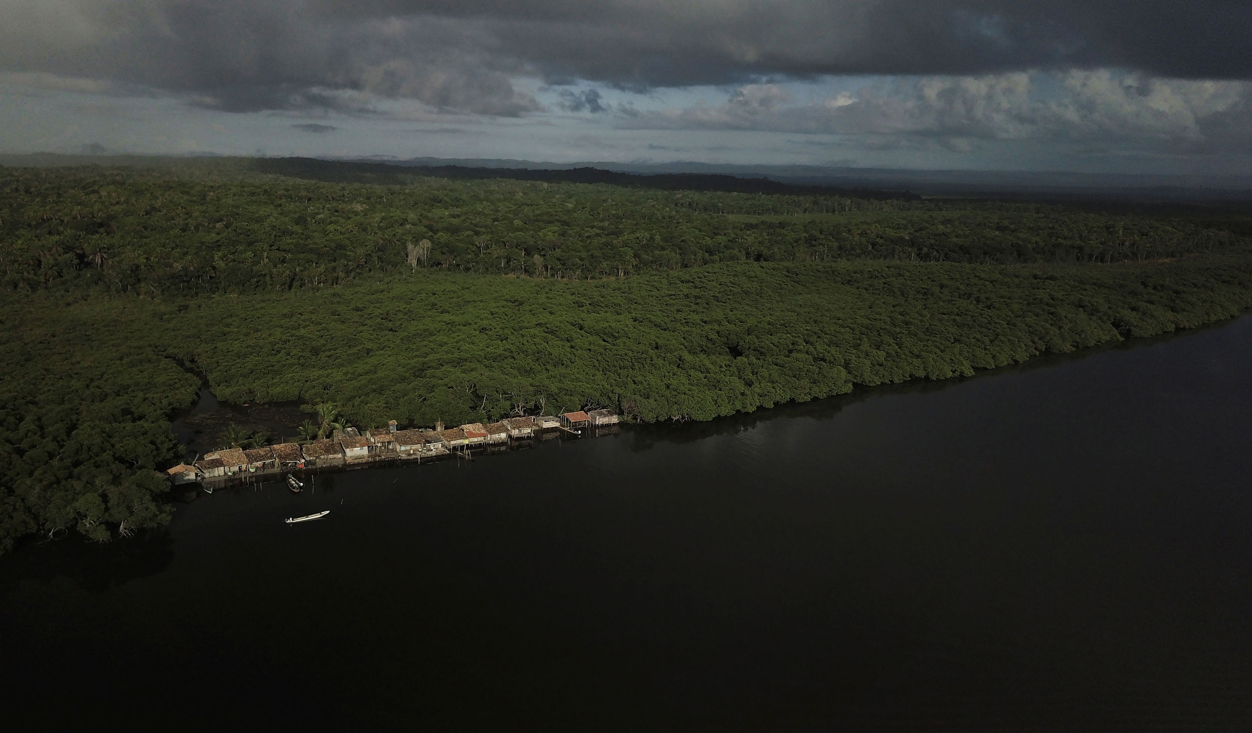 A photograph taken from above shows a small village set alongside a mangrove forest.