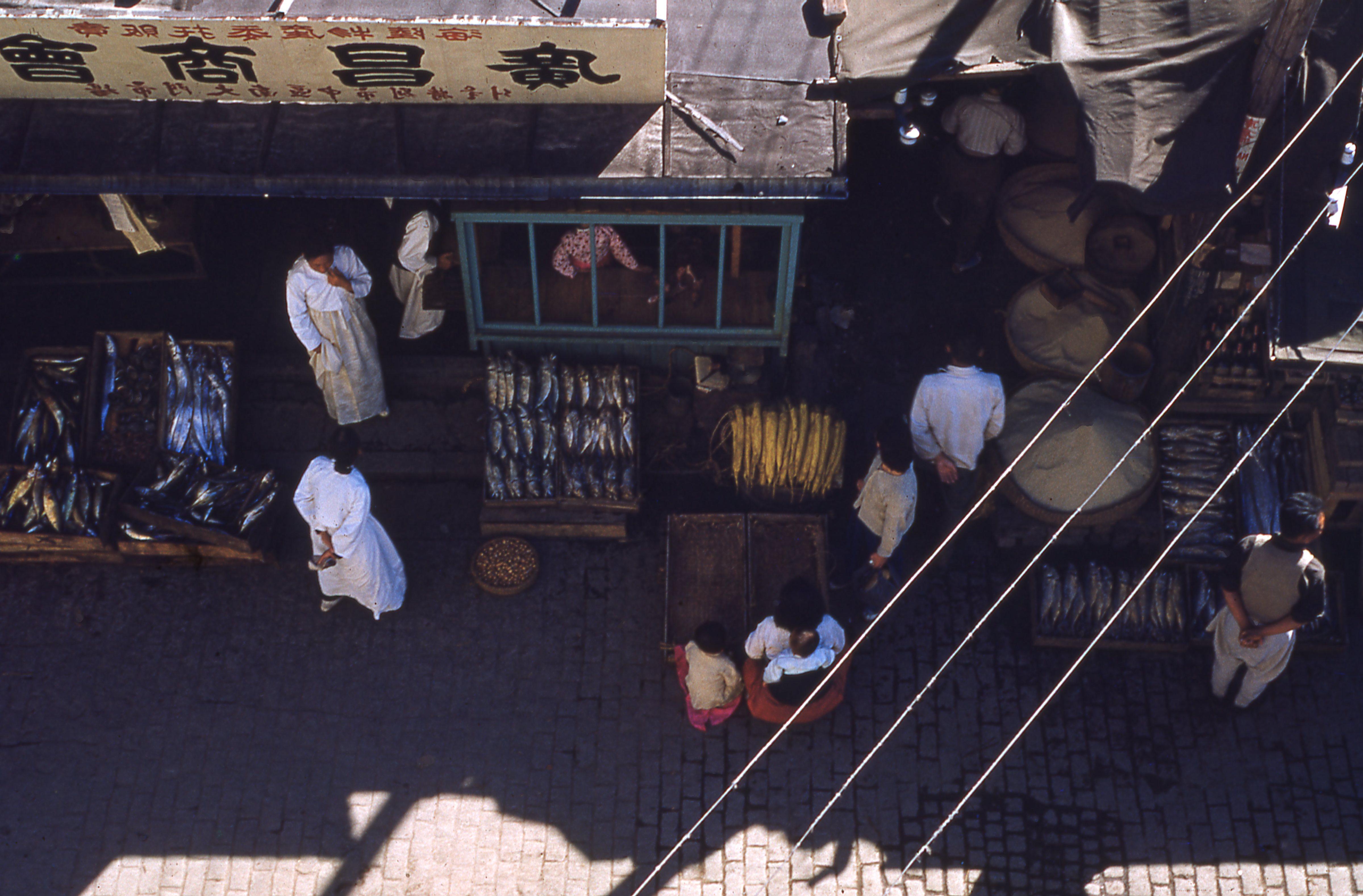 korean fish store in the 1950s