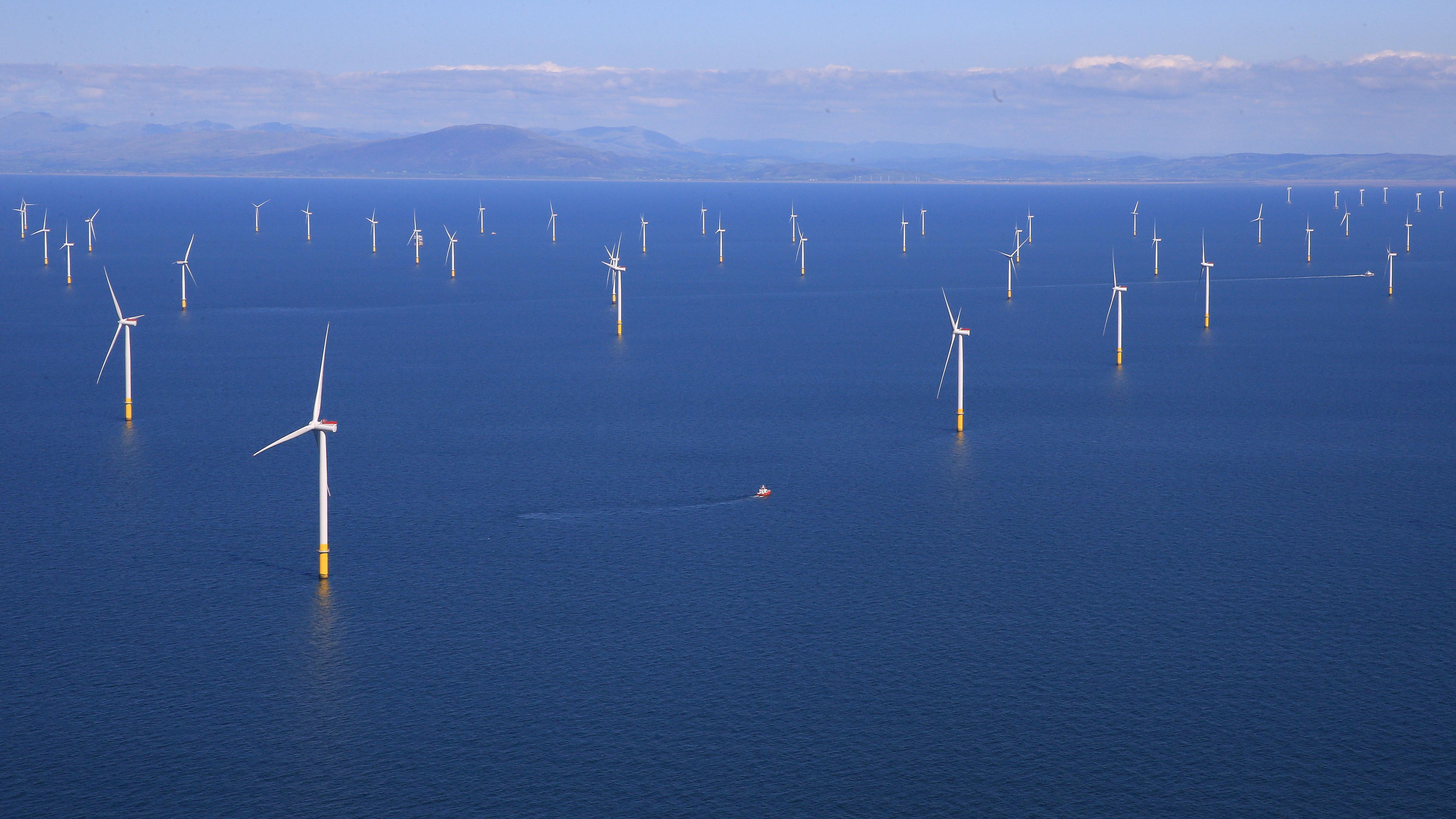 Multiple white windmills dot the blue ocean.