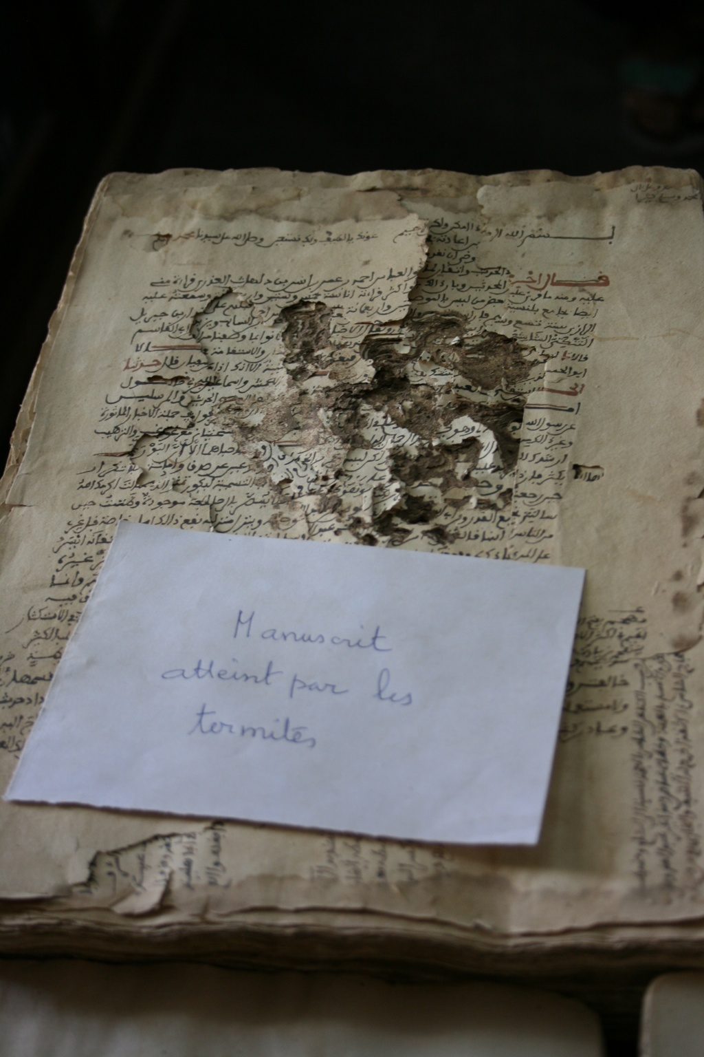 Timbuktu preserves historic manuscripts