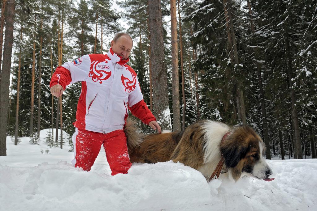 Vladimir Putin Dog Buffy Vladimir Putin shows s...