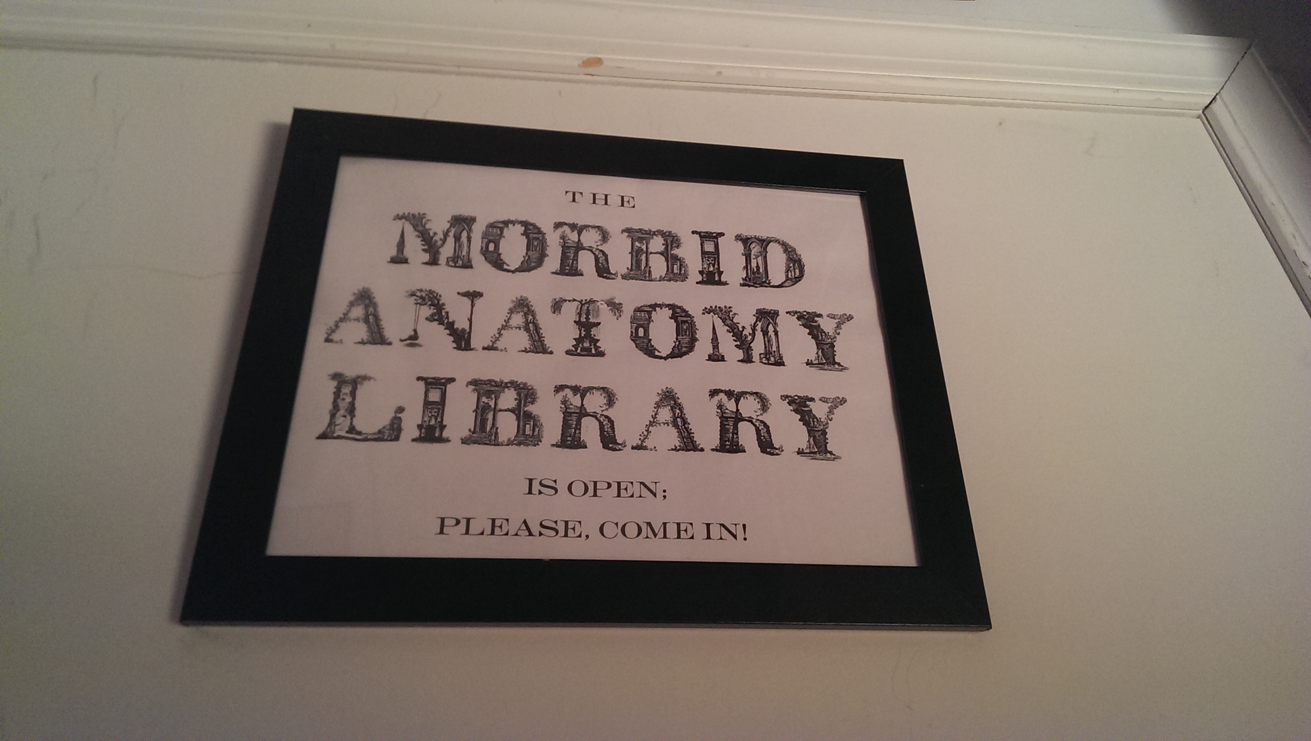At the Morbid Anatomy Library in Brooklyn.