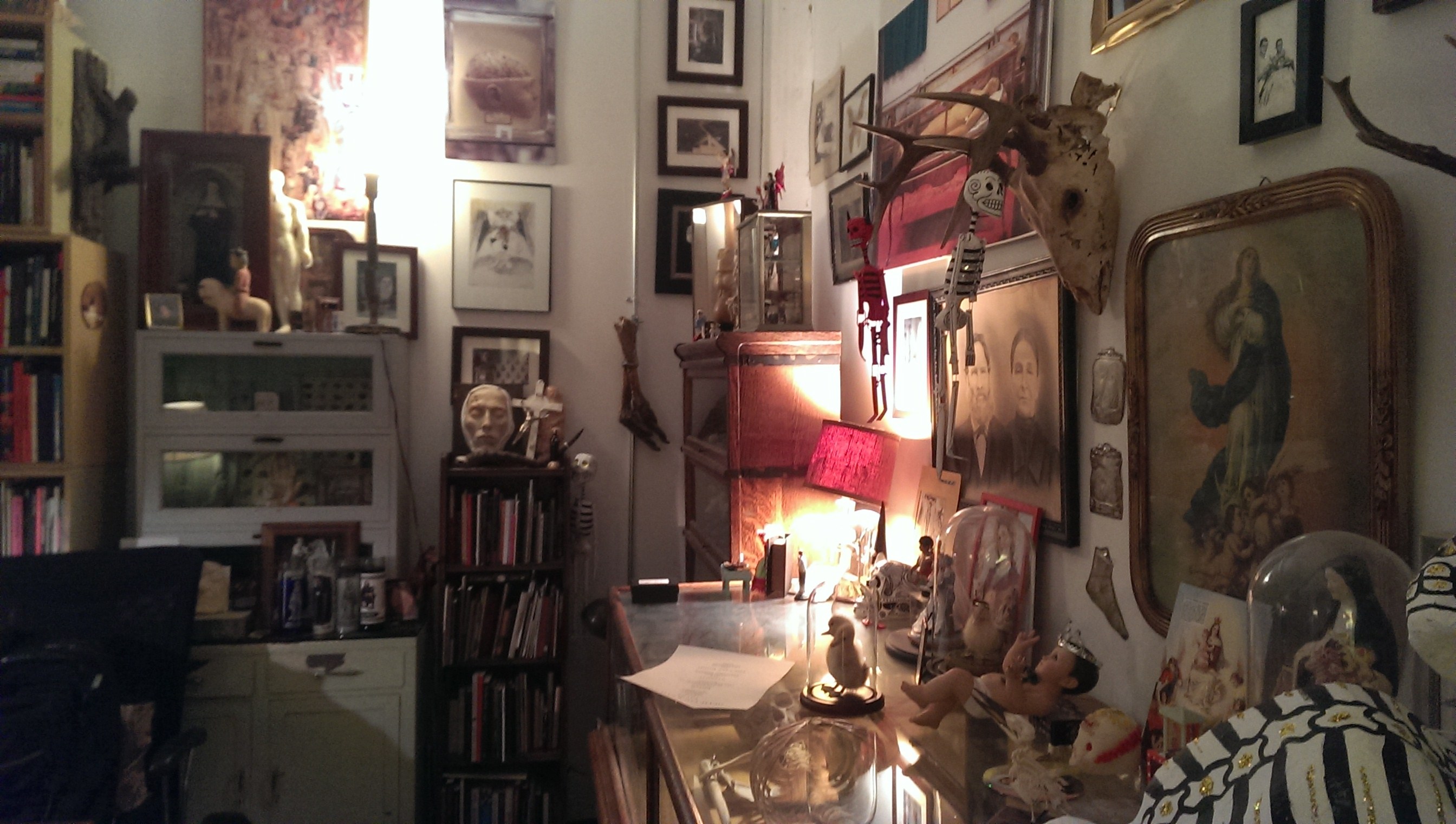 Next year, the Morbid Anatomy library is moving out of its cramped room in the Proteus Gowanus arts space to take over a three story former nightclub nearby. It will reopen as the Morbid Anatomy Museum.
