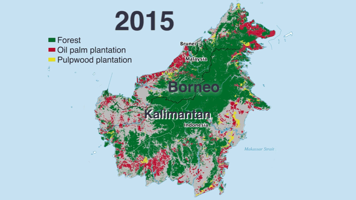 Image of: Borneo Map The World From Prx