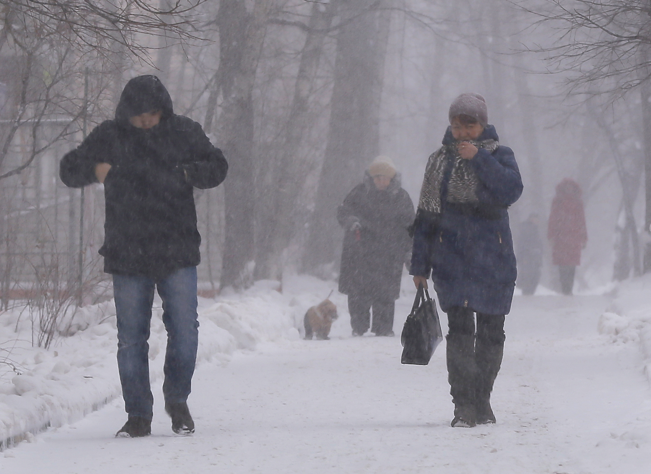 Moscow walk in a blizzard 27