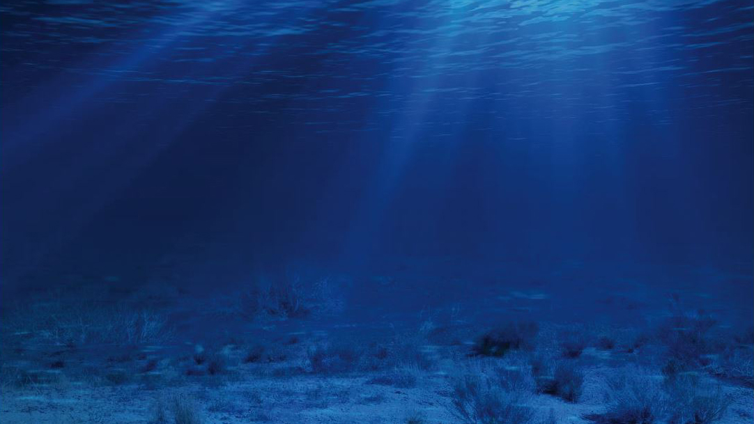 We need phosphate to grow food but should we be digging for 10 facts about the ocean floor