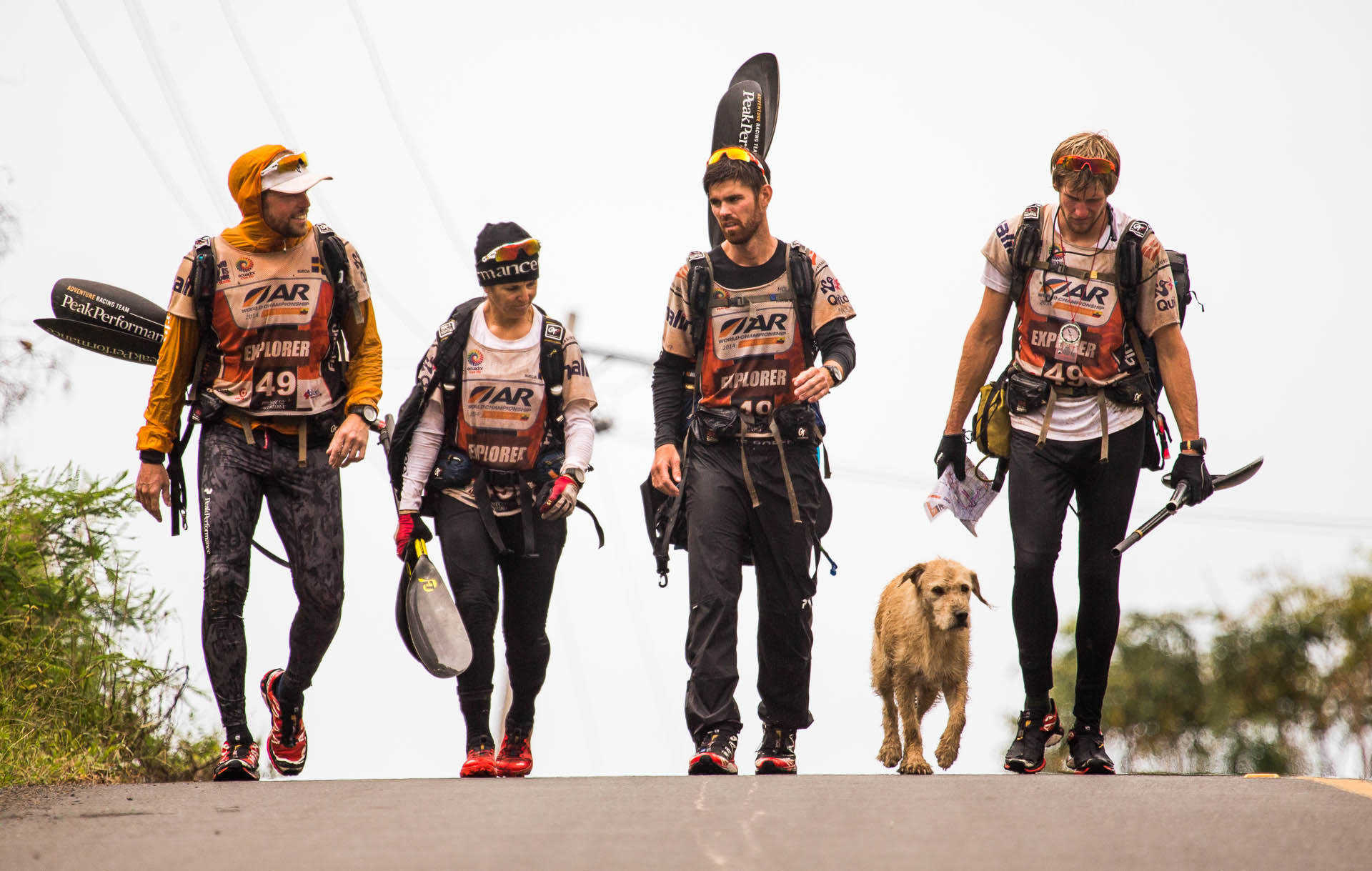 Team Peak Performance walks with stray dog Arthur during a stage of the 430-mile Adventure Racing World Championship.
