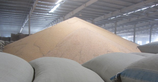 A mountain of grain in a Chinese warehouse. China is importing more of its supply of thirsty and land-intensive crops like corn and soy, often from leased or purchased land that guarantees a supply outside of the regular international market.