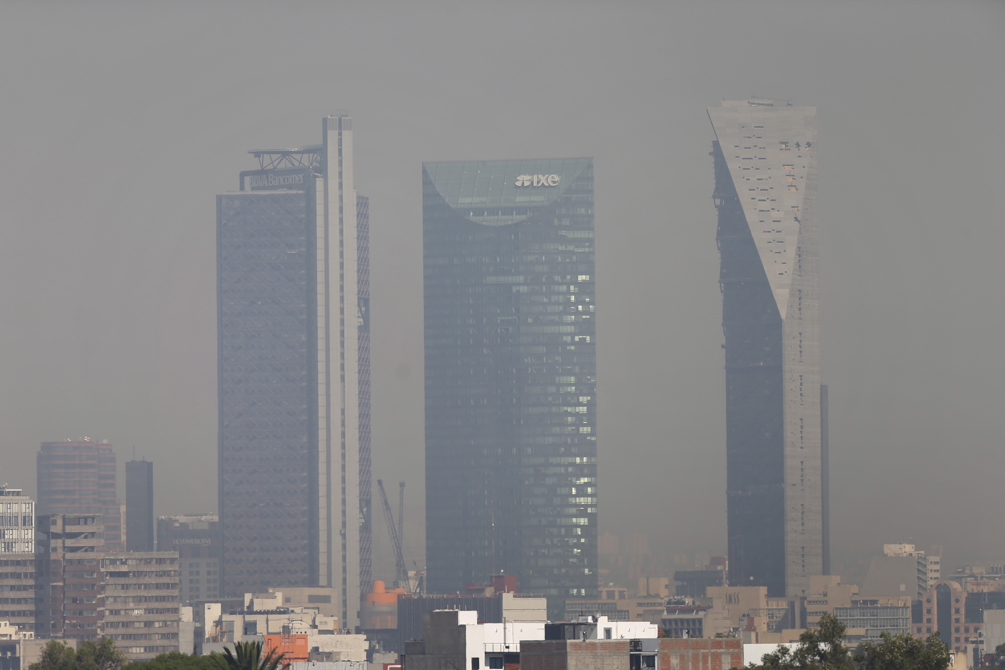 air pollution in mexico city essay Access to over 100,000 complete essays and in areas where pollution exceeds federal air quality standards, as well air pollution is responsible for more.