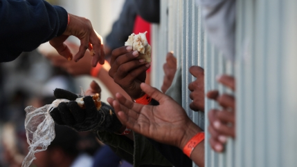 migrants reach through a fence with pieces of food