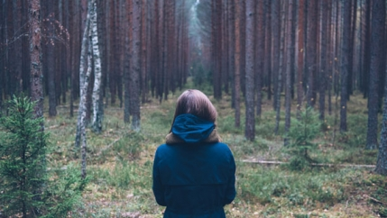 A person walks through the woods surrounded by greenery.