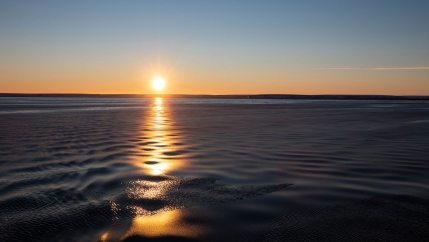 Grease ice dampens ripples in the water near a golden orange sunset.