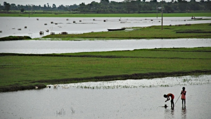 Bangladesh flooded farms.