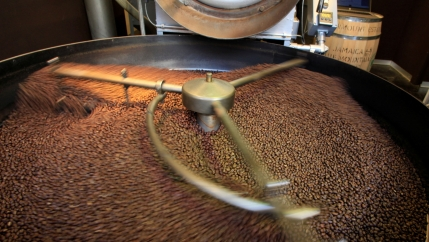 Coffee beans swirl in a large roaster