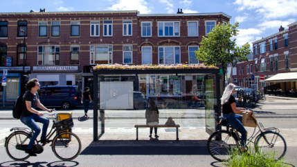 Cyclist ride in front of a bus shelter with flowers planted on the roof.