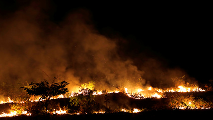 Red and orange blazing fires in Amazon forest