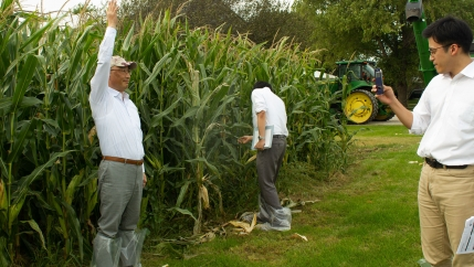 Grain buyers from Japan check out the corn on Rod Pierce's farm near Woodward, Iowa.