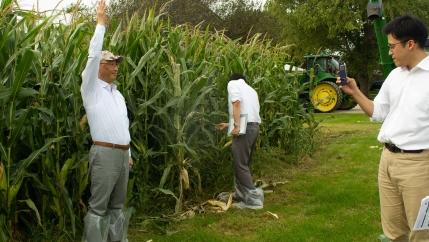 Grain buyers from Japan check out the corn on Rod Pierce's farm near Woodward, Iowa.
