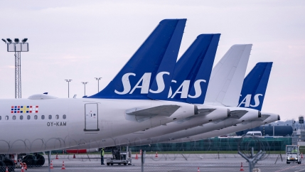 The tails of several aircraft from SAS airlines are shown lined up.