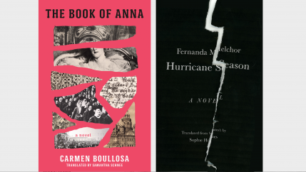 Two novels translated into English this spring show the broad landscape of Mexican literature today.
