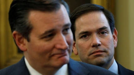 US Senators Ted Cruz and Marco Rubio are shown standing near each other and wearing dark suits.