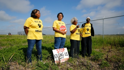 Four Black American women activists wearing yellow shirts and holding protest signs stand in a field near a fence.
