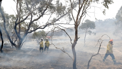 Firefighters control a spot fire near Bredbo, south of the Australian capital, Canberra, Feb. 2, 2020.