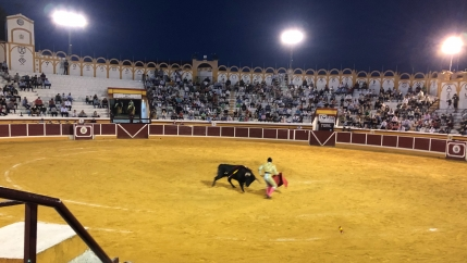 Leandro Gutierrez, a 22-year-old Colombian, takes on a bull using the classic red cape.