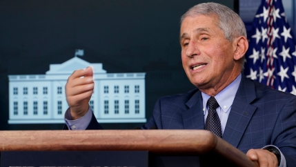 Dr. Anthony Fauci speaks during a news conference with the coronavirus task force at the White House, Nov. 19, 2020.