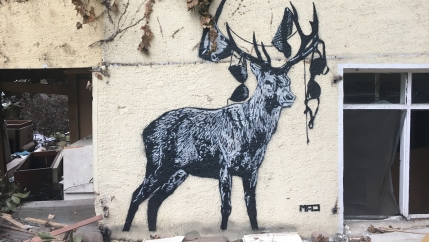 On the exterior of the building, the stencil of a stag created by the artist MAD stands solemnly, with pieces of women's underwear hanging from its horns.