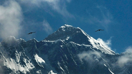 Birds fly above Mount Everest against a blue sky