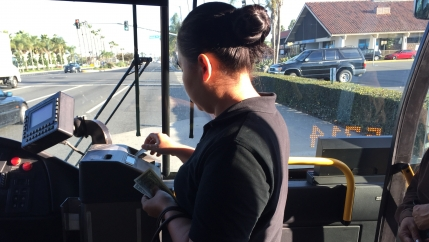 Woman putting bills in public bus machine, with windshield behind her
