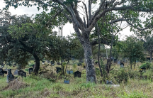 a graveyard in Zimbabwe