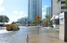 Miami sunny day tidal flooding