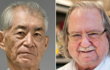 American James Allison and Japanese Tasuku Honjo won the 2018 Nobel Prize for Physiology or Medicine on Monday for game-changing discoveries about how to harness and manipulate the immune system to fight cancer.