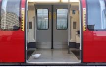 A bird walks inside a commuter underground tube train