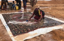 A woman crouches down and scrubs a large Persian rug in the desert.