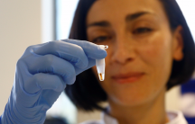 DNA testing in The Hague