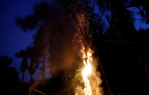 Fire licks up a palm tree at night