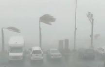Category-1 strength winds bend palm trees as HurricaneDorianslams into St. Thomas, US Virgin Islands onAug. 28, 2019.