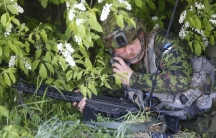 A solider positioned in shrubbery.