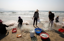 People wearing protective masks collect fishes on a beach during the coronavirus disease (COVID-19) outbreak in Da Nang city,Vietnam, May 6, 2020.