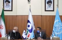 Head ofIran's Atomic Energy Organization Ali-Akbar Salehi and International Atomic Energy Agency (IAEA) Director General Rafael Grossiattend a press conference in Tehran,Iran, Aug.25, 2020.